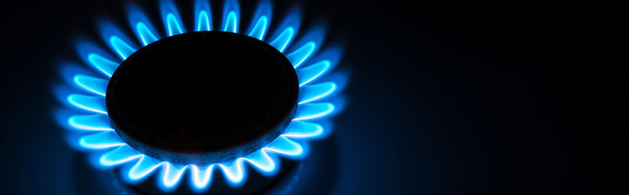 Domestic Gas Services